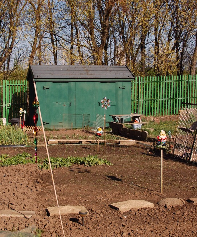 Ayresome Allotments