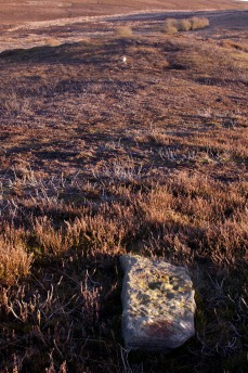 Old Castle Hill stones