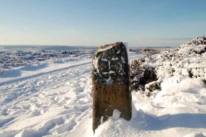 Urra Moor Face Stone