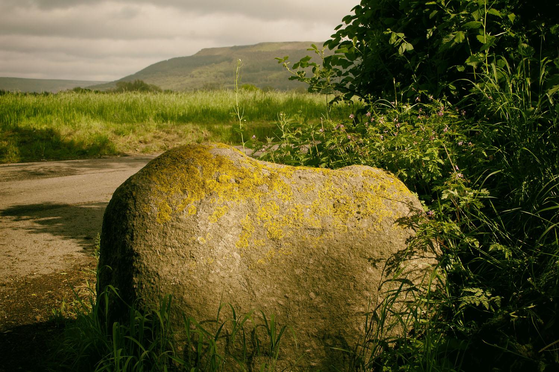 Dromonby Shap Granite Erratic