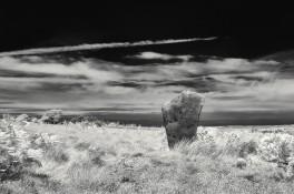 Busco Stone