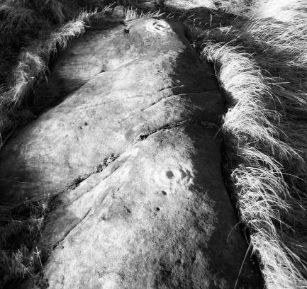 Fylingdales Moor