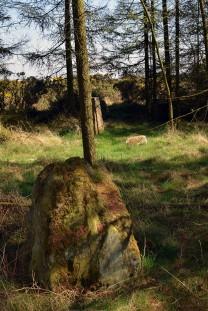 Swarth Howe stone & trig point