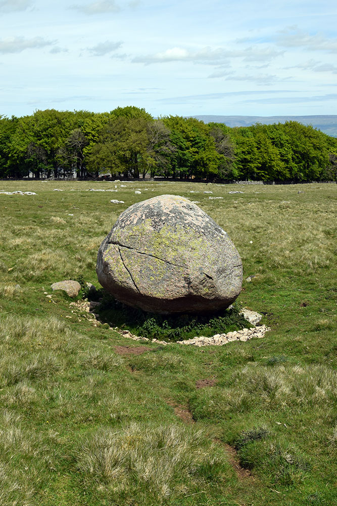 One of many Thunder Stones