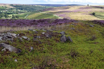 Enclosure & Esk Valley