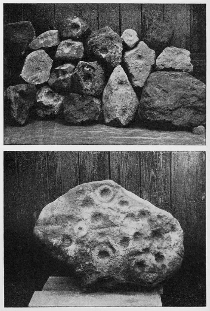 Brotton barrows cupstones