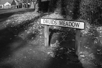 Druids Meadow