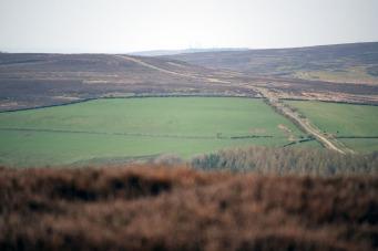 Percy Rigg road, Brown Hill, Eston Moor in the distance.