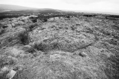 Percy Rigg Hut Circles i