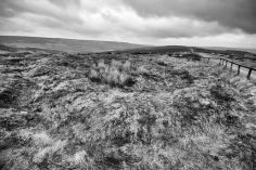 Percy Rigg Hut Circles iii