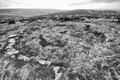 Percy Rigg Hut Circles