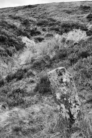 Percy Rigg spring stone