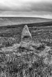 Percy Rigg Standing Stone