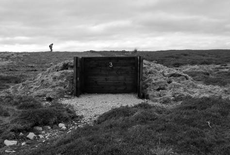 Skelton Moor