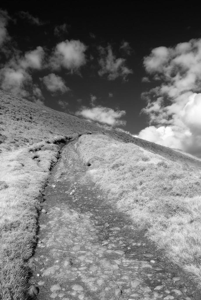 TOHW path