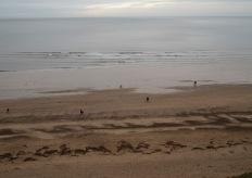 littoral